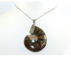 Ammonite Shell Pendant (L)