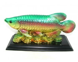 Feng Shui Arowana on Coins (L)