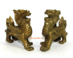 Brass Pair Mini Feng Shui Piyao