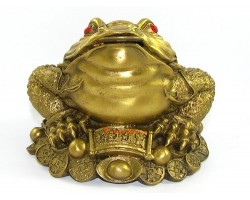 Brass Wealthy Money Frog on Treasure