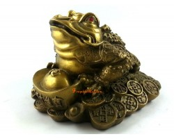 Brass Wealthy Money Frog on Treasure (m)