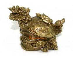 Brass Feng Shui Dragon Tortoise (s)