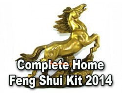 2014 Complete Home Feng Shui Kit