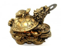 Dragon Tortoise on Coins