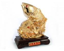 Exquisite Golden Feng Shui Arowana with Large Coin (L)