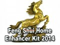 2014 Feng Shui Enhancer Kit