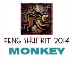 2014 Feng Shui Kit - Horoscope Monkey