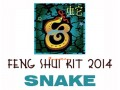 2014 Feng Shui Kit - Horoscope Snake
