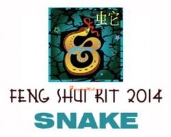 2014 Feng Shui Kit - Horoscope Snake