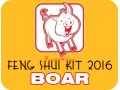 Feng Shui Kit 2016 for Boar