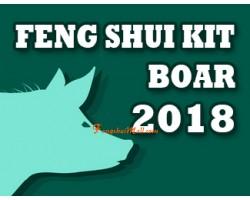 Feng Shui Kit 2018 for Boar