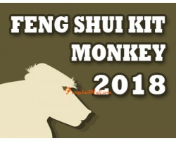 Feng Shui Kit 2018 for Monkey