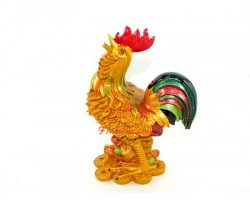 Feng Shui Rooster on Treasure