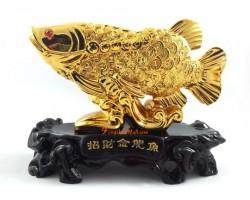Golden Arowana to Attract Wealth