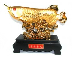 Exquisite Golden Arowana with Lotus Flower (XL)