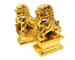 Golden Feng Shui Fu Dogs for Protection