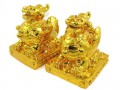 Golden Pair of Fengshui PiXiu