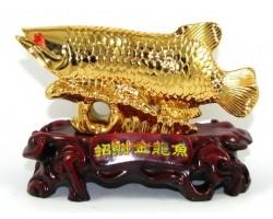 Golden Wealth Inviting Arowana (S)