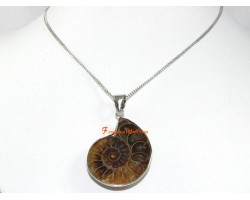 Polished Halved Ammonite Fossil Pendant