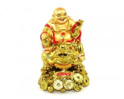 Laughing Buddha on Money Frog and Treasure