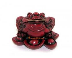 Feng Shui Money Frog on Ingots