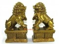 Pair of Brass Feng Shui Fu Dogs for Protection