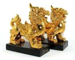 Pair of Feng Shui Golden Pi Yao