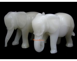 A Pair of White Elephants with Trunks Down