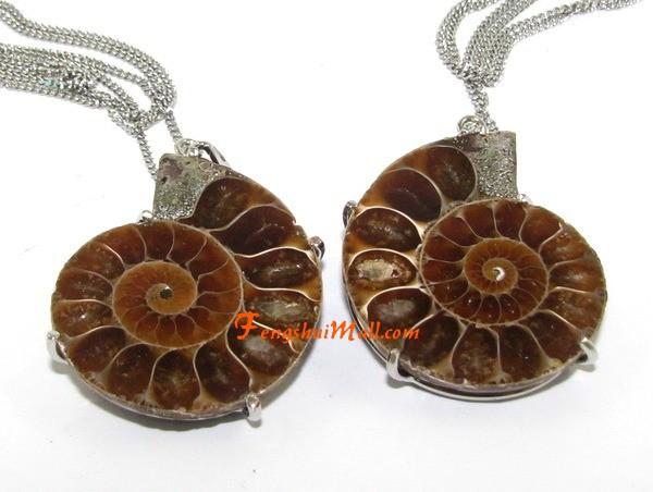 A pair of halved ammonite couple pendants in frame feng shui jewelry a pair of halved ammonite couple pendants in frame aloadofball Images