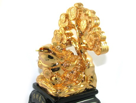 Feng Shui Money Frog with Money Tree