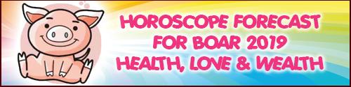 Horoscope Feng Shui Forecast 2019 for Boar