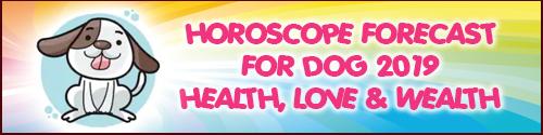 Horoscope & Feng Shui 2019 for Dog