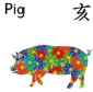 Feng Shui 2020 Forecast for Boar