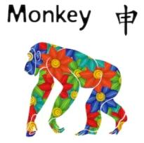 2020 Horoscope Forecast for Monkey