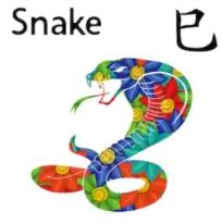 Feng Shui Horoscope 2020 Outlook for Snake