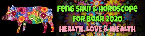Horoscope Feng Shui Forecast 2020 for Boar
