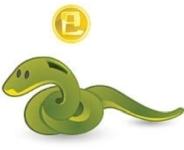 Feng Shui Horoscope 2021 Outlook for Snake