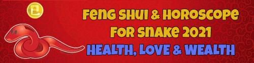 Feng Shui Horoscope 2021 for Snake