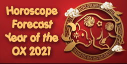 Feng Shui 2021 Horoscope Forecast