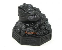 Black Money Frog on Bagua