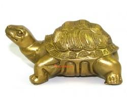 Brass Feng Shui Tortoise Figurine