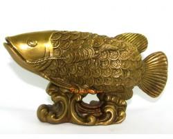 Brass Feng Shui Arowana with Coin Scale