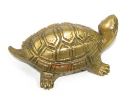 Brass Feng Shui Tortoise