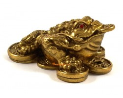 Brass Money Frog on Bed of Coins