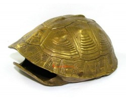 Brass Tortoise Shell for Fortune Telling