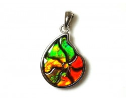 Canadian Ammolite Shell Shape Pendant with 925 Silver Frame