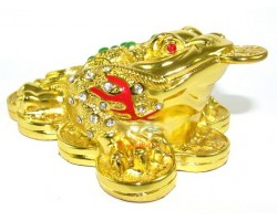 Exquisite Bejeweled Golden Money Frog for Wealth Luck
