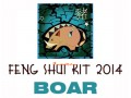 2014 Feng Shui Kit - Horoscope Boar