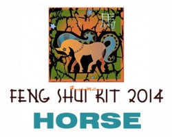 2014 Feng Shui Kit - Horoscope Horse