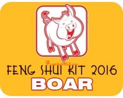 Feng Shui Kit 2016 for Boar